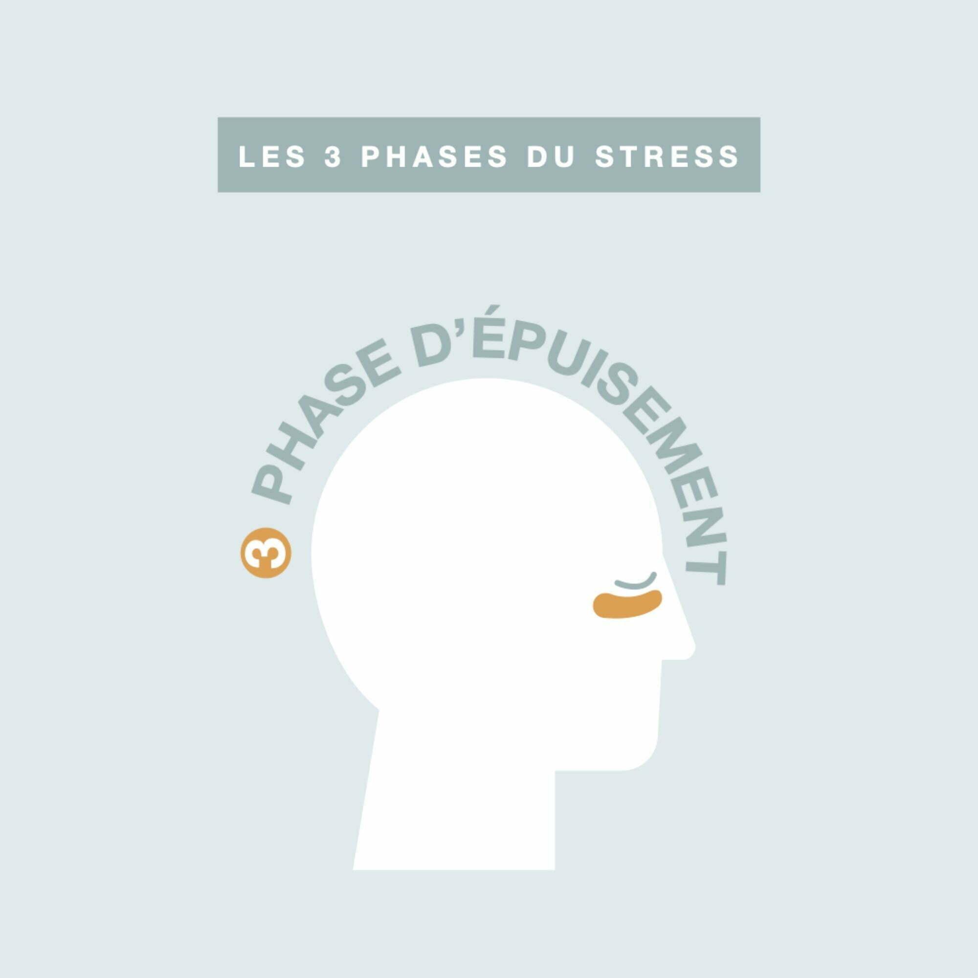 LAVILAB-stress